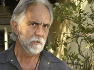 Tommy Chong: Throw Away Your CBD Now